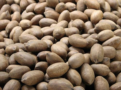 Piante da frutto tropicali e subtropicali carya illinoensis for Vendita piante da frutto tropicali